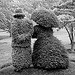 Topiary kertrészlet